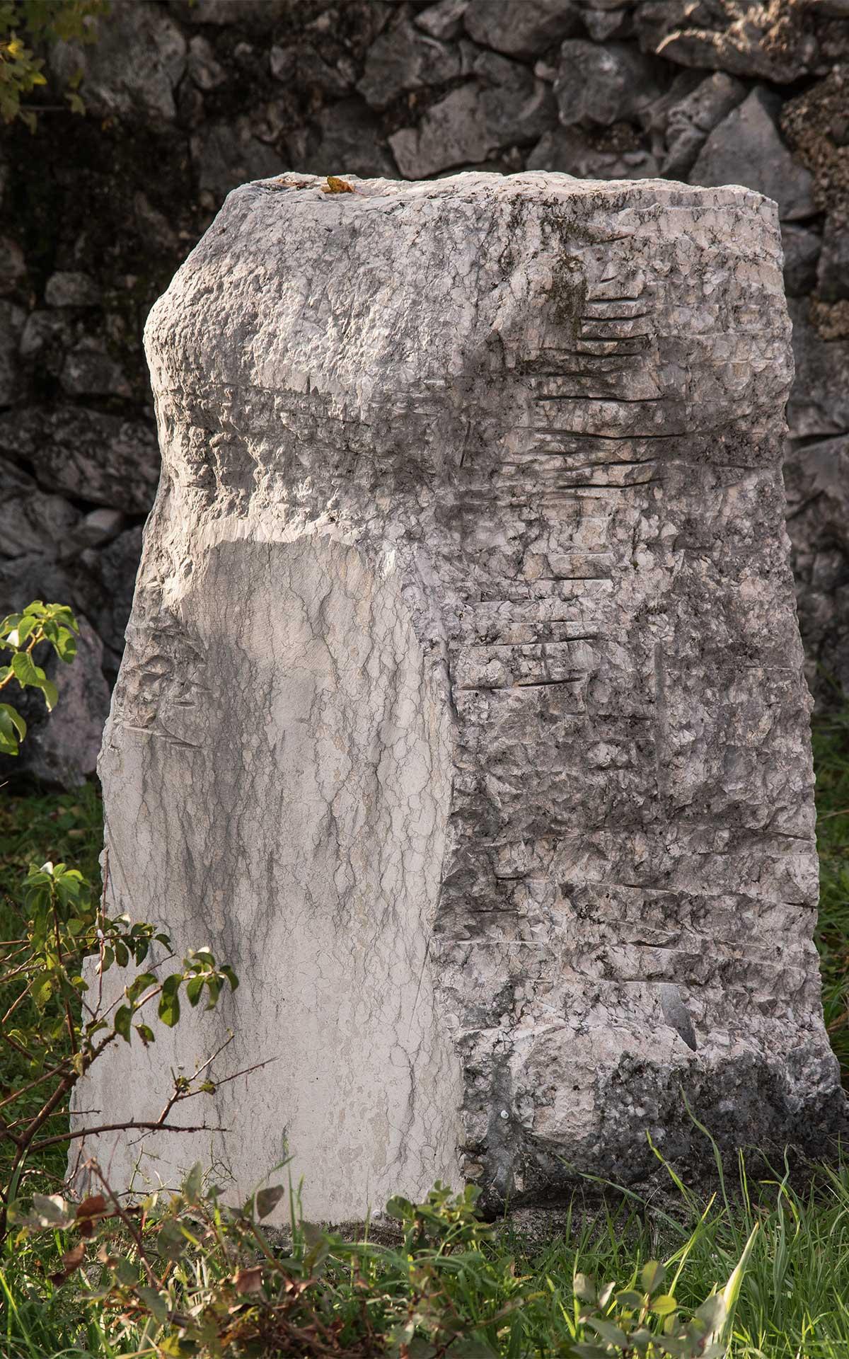 Belizar Bahorić TORZO (nedovršeni rad)